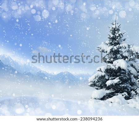 Winter background with snow and spruce. mountains, alps - stock photo