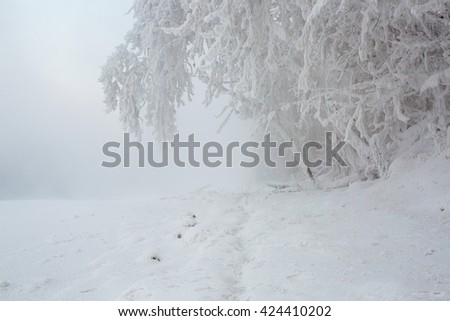 Winter beautiful landscape with trees covered with hoarfrost. Siberia, Russia - stock photo