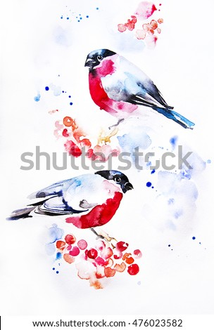 Winter.Birds- bullfinch on tree branch with red berries rowan. Hand illustration - watercolor on textured paper.Element for pattern,postcard. Holiday,Celebration,New Year, Christmas.