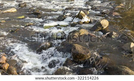 winter brook in the forest - stock photo