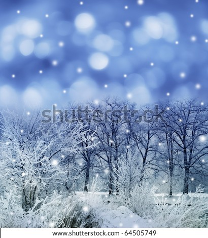 winter christmas landscape - stock photo