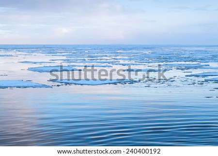Winter coastal landscape with big floating ice fragments on still cold water. Gulf of Finland, Russia - stock photo