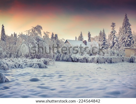 Winter fairytale, heavy snowfall covered the trees and houses in the mountain village. Loyeva village, Carpathian, Ukraine, Europe. - stock photo