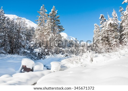 Winter forest and mountain river at sunny day. Beautiful landscape.