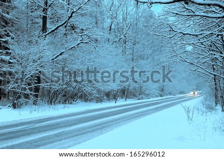 winter forest road in twilights - stock photo