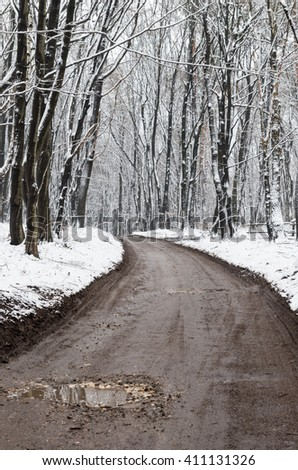 Winter forest road with dark trees, ground covered with snow