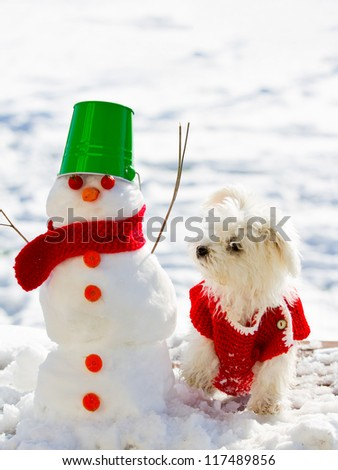 Winter friends - cute puppy playing with snowman - stock photo