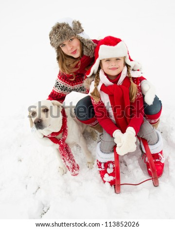 Winter fun , snow, sledding with dog at winter time - stock photo