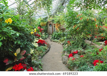winter garden - stock photo