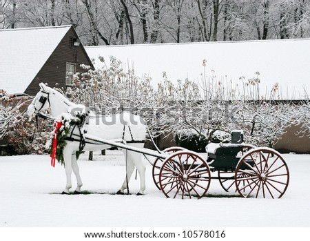winter holiday scene - stock photo