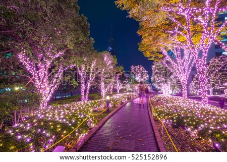 Winter illumination in Tokyo at Shinjuku district, Japan