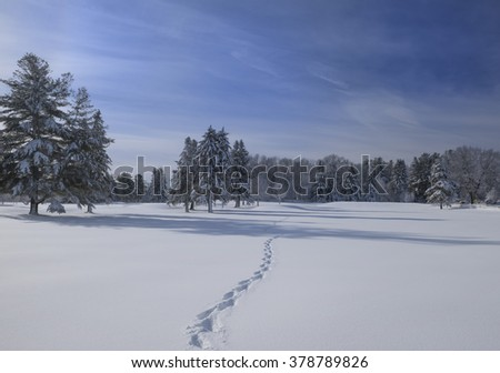 Winter in Massachusetts - stock photo