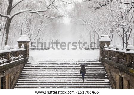 Winter in New York - stock photo