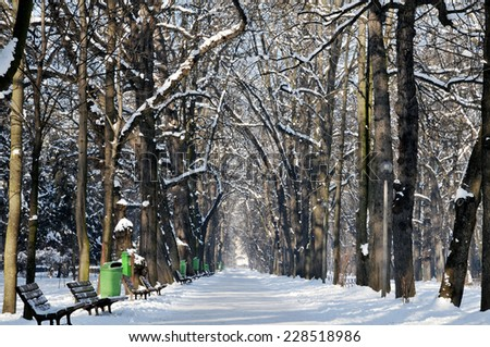 Winter in park, snow covered bench - stock photo