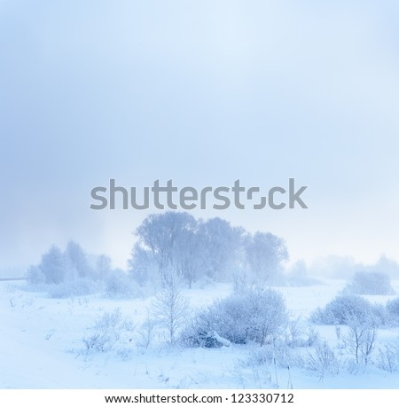 Winter landscape. Cold winter evening - stock photo