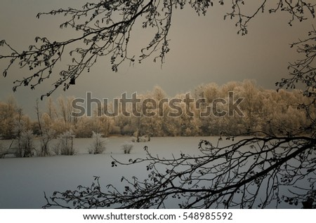 Winter landscape.Freezing fog on the trees.The island on the lake.Cold scene.Winter sunset.Frosted trees.Nature background.