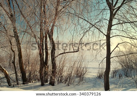 Winter landscape - frosted trees near the river at the sunrise. Soft focus and vintage tones processing - stock photo