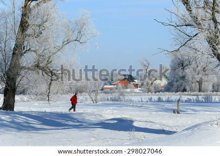 winter landscape frosty morning in the village, the frost on trees, fences and snow-covered road on a sunny day  - stock photo