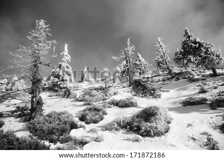 Winter landscape in Czech mountains in Black and white - stock photo
