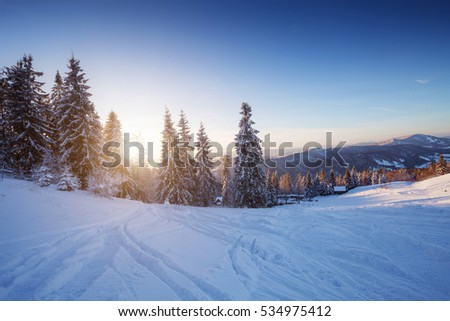Winter landscape in mountains at sunset. Snow covered trees and tracks of skis