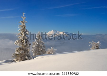 Winter landscape in sunny weather. Snow in the mountains. Christmas view. Carpathians, Ukraine, Europe - stock photo