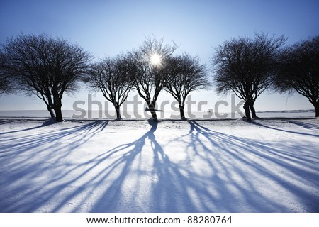 Winter landscape in sunset - stock photo