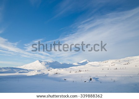 winter landscape in sweden during the evening light - stock photo