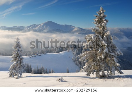 Winter landscape in the mountains. Sunny frosty morning. Carpathians, Ukraine. Christmas view - stock photo