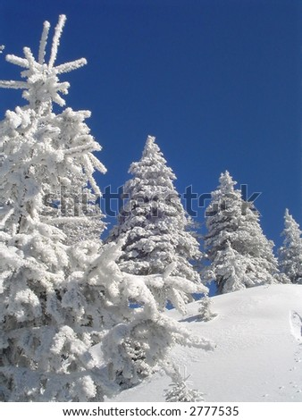 Winter landscape near the slope. - stock photo