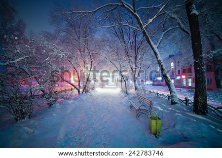 Winter landscape, night alley with bench. Beautiful light and atmosphere. The pathway creates depth in this image allowing viewers eye to progress into scene. Winter wonderland, nice mood and colors. - stock photo
