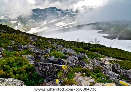 Winter landscape of a glacier with snow capped mountains in the background on a foggy day. In the foreground lies rocky walking trail with alpine flowers and plants. People trekking in distance.