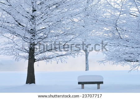 Winter landscape of frosted trees and park bench in light fog at sunrise on a frigid morning, Michigan, USA - stock photo