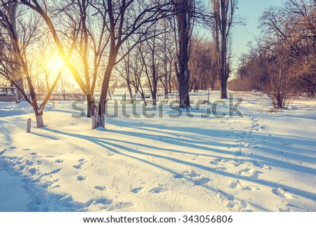 Winter landscape of frosty trees, white snow and blue sky - stock photo