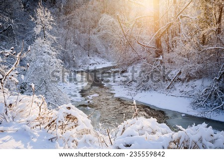 Winter landscape of snow covered forest and flowing stream after winter snowstorm glowing in warm sunshine. Ontario, Canada. - stock photo