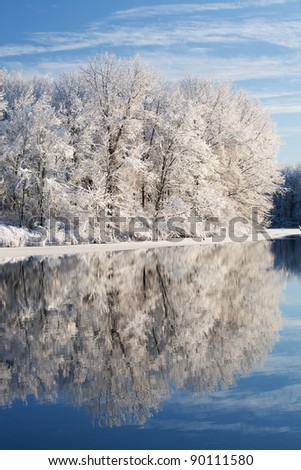 Winter landscape of snow covered trees on the shoreline of Jackson Hole Lake with reflections in calm water, Fort Custer State Park, Michigan, USA - stock photo