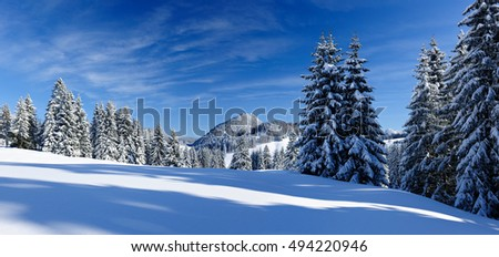 Winter Landscape, Spruce Tree Forest Covered by Snow illuminated by the sun, Allgau, Bavaria, Germany
