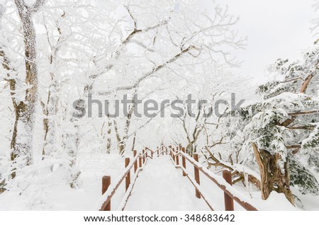 Winter landscape white snow of Mountain in Korea - stock photo