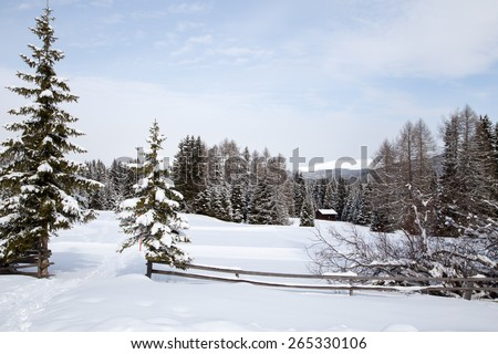 Winter landscape / Winter landscape on Monte Pana, South Tyrol, Italy. - stock photo