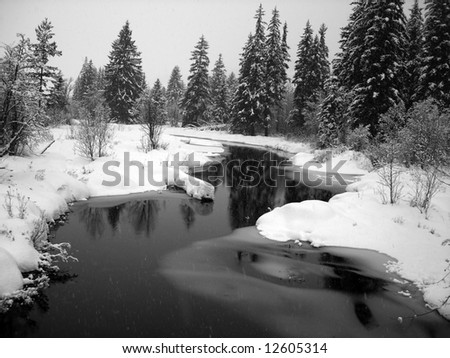 Winter landscape with a river and pine trees, snow falling, horizontal - stock photo