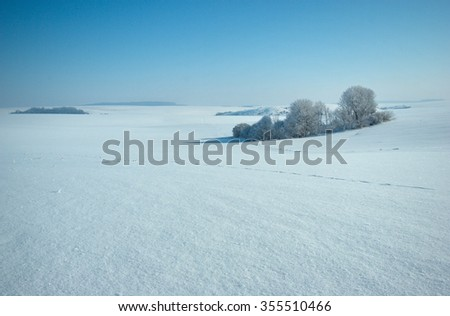 Winter landscape with group of trees in a snowy field - stock photo
