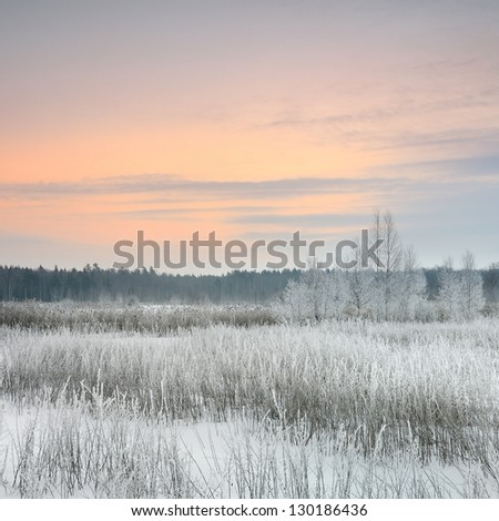 winter landscape with hoar-frost at the sunrise - stock photo