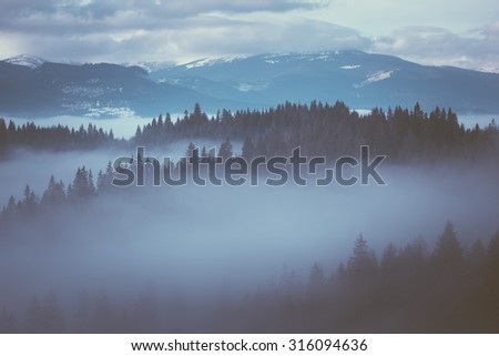 Winter landscape with morning fog on a mountain slope. Color toning. Low contrast - stock photo