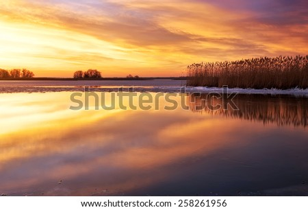 Winter landscape with river, reeds and sunset sky. Beautiful winter landscape. Composition of nature.  - stock photo