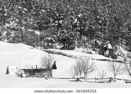 winter landscape with small wooden cabin near forest, black and white background  - stock photo