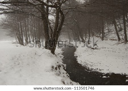 winter landscape with snow and river - stock photo