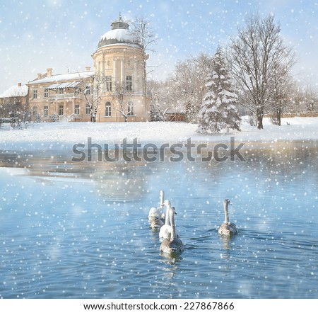 Winter, landscape with snow, castle and swans. - stock photo