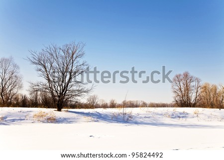 Winter landscape with snow. Russian winter - stock photo