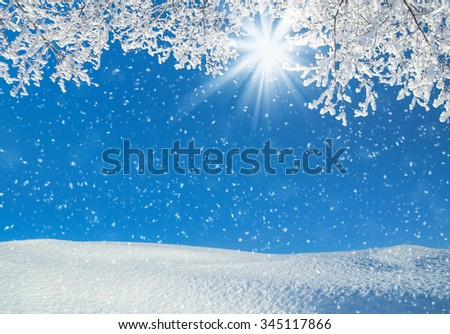 Winter landscape with snowdrifts and tree branches in hoarfrost - stock photo