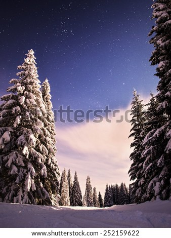 winter landscape with stars