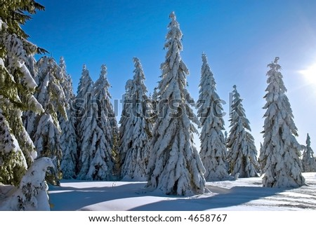 winter landscape with sunbeam - stock photo